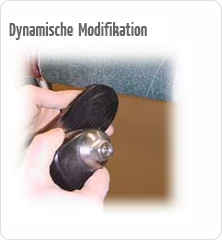 Dynamische Modifikation